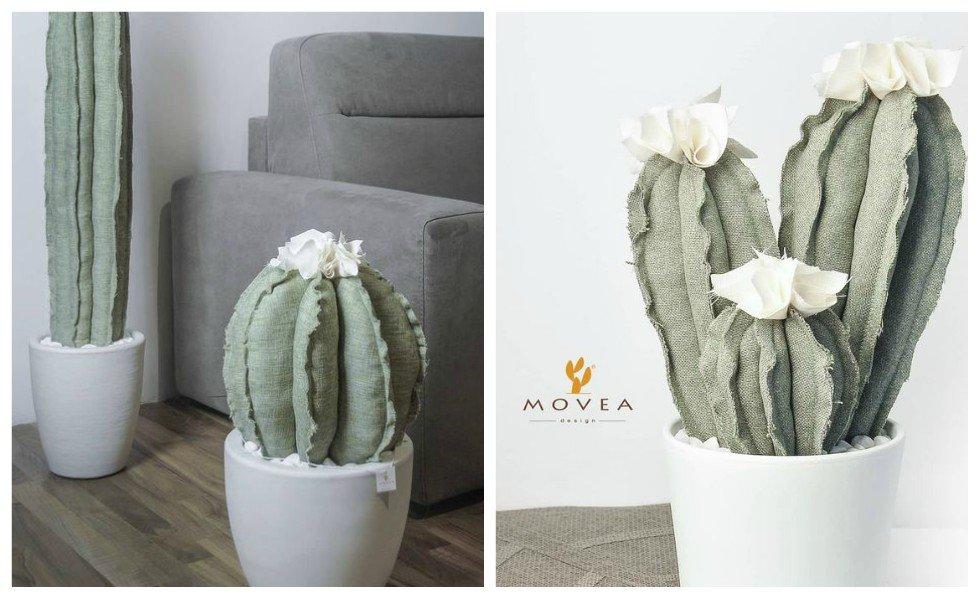 cactus movea design